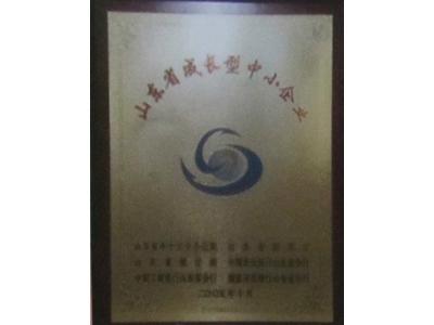 山东省成长型中小企业
